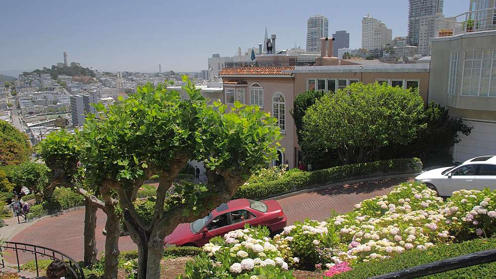 View of tourists walking on Lombard Street, San Francisco, California, United States of America, North America - 1276-1310