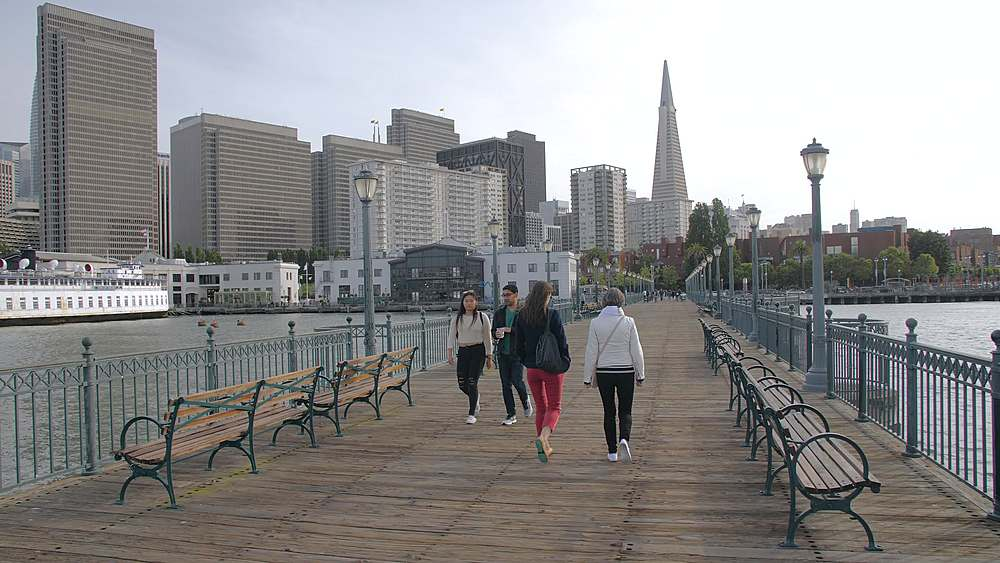San Francisco skyline and Transamerica Pyramid from Pier 7, California, United States of America, North America - 1276-1348
