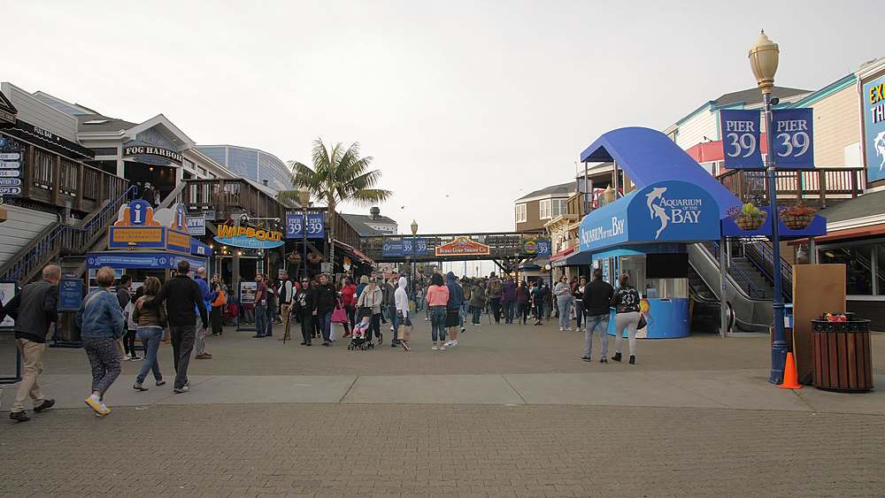 Busy Pier 39 in Fishermans Wharf, San Francisco, California, United States of America, North America - 1276-1354