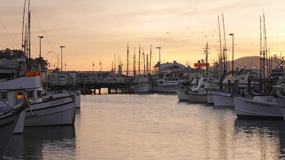 Yachts and boats in Fishermans Wharf harbor at sunset, San Francisco, California, United States of America, North America - 1276-1372