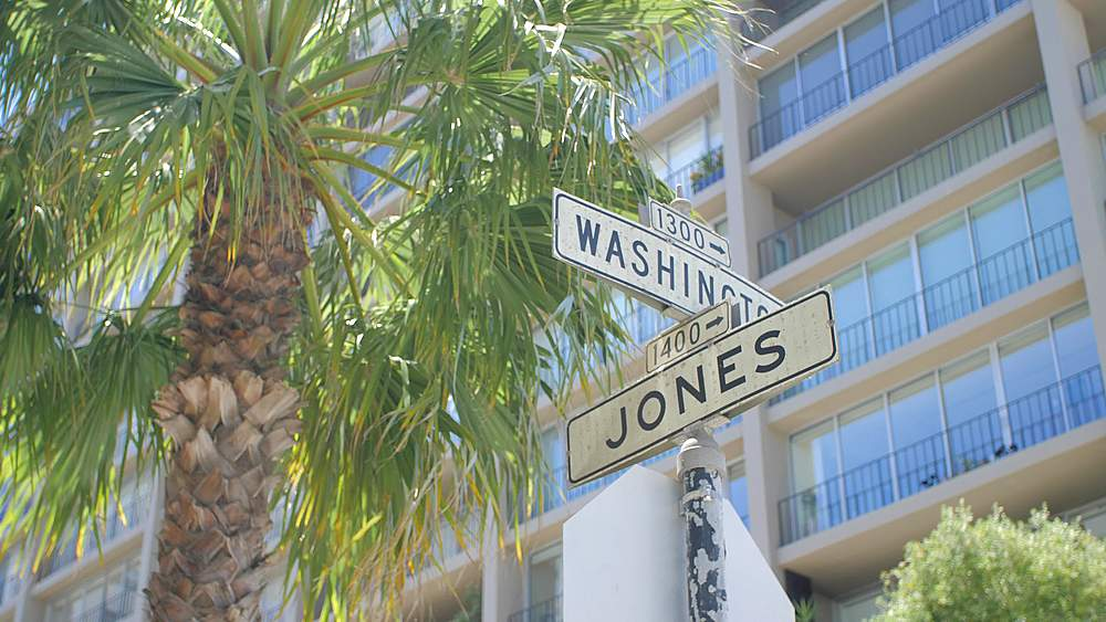 Washington and Jones steet sign with palm tree, Russian Hill, San Francisco, California, United States of America, North America - 1276-1395
