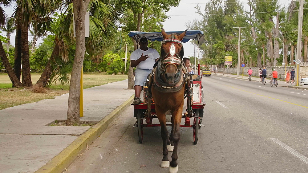 Main street from the horse chariot in Varadero, Cuba, West Indies, Caribbean, Central America