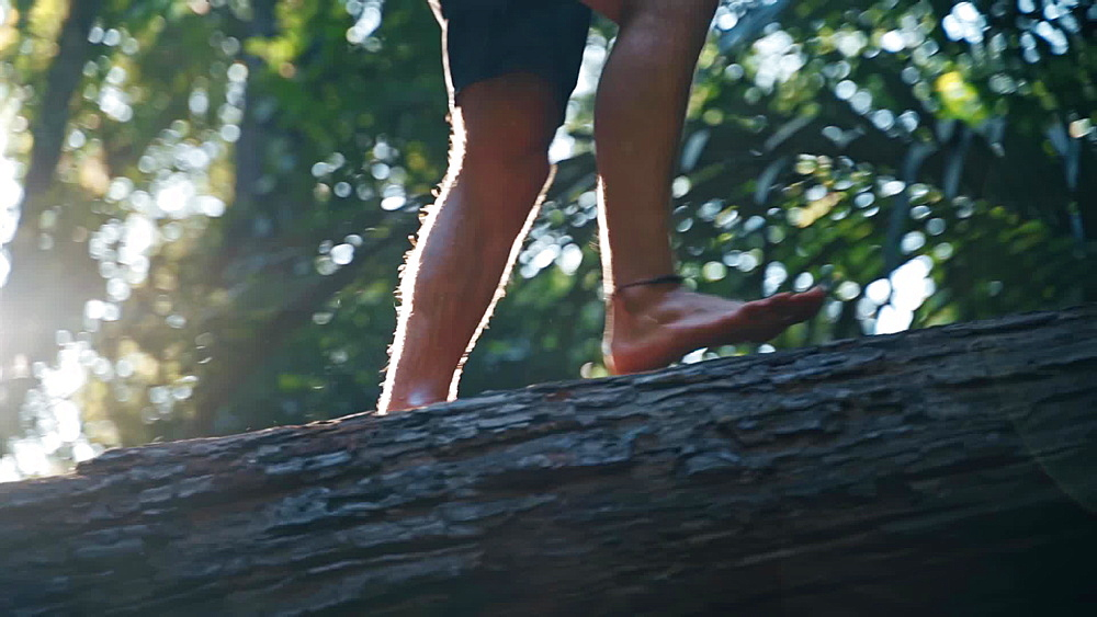 Video of a jungle boy walking on a tree at Huay To Waterfall, Krabi, Thailand, South East Asia