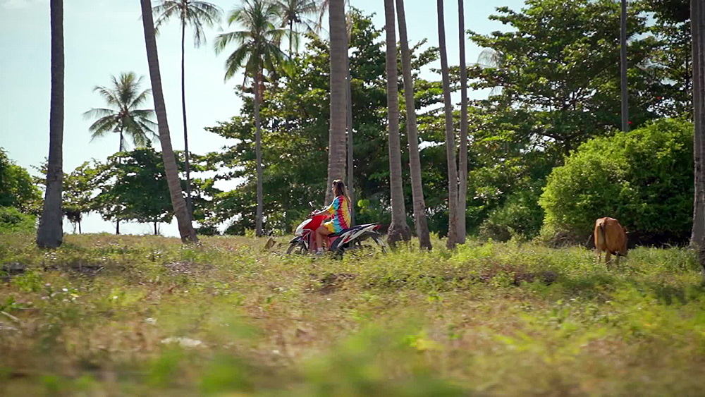 Video of a girl riding a scooter through a palm tree forest in Koh Lanta old town, Ko Lanta Island, Phang Nga Bay, Thailand, Southeast Asia, Asia