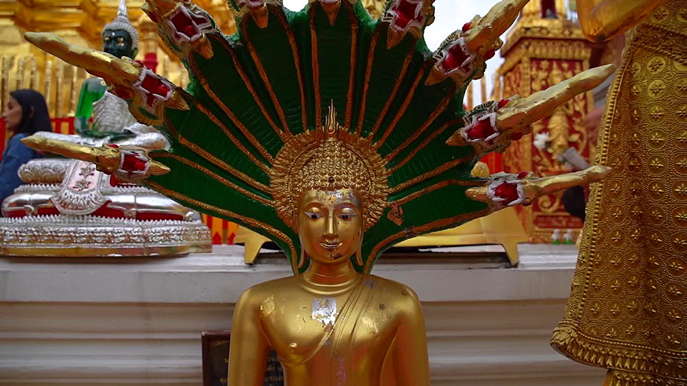 Video of golden Wat Phra That Doi Suthep temple, Chiang Mai, Thailand, Southeast Asia, Asia - 1276-2543