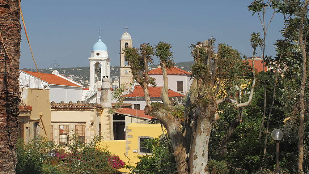 Palm tree and The Orthodox Cathedral in the background, Chania, Crete, Greek Islands, Greece, Europe