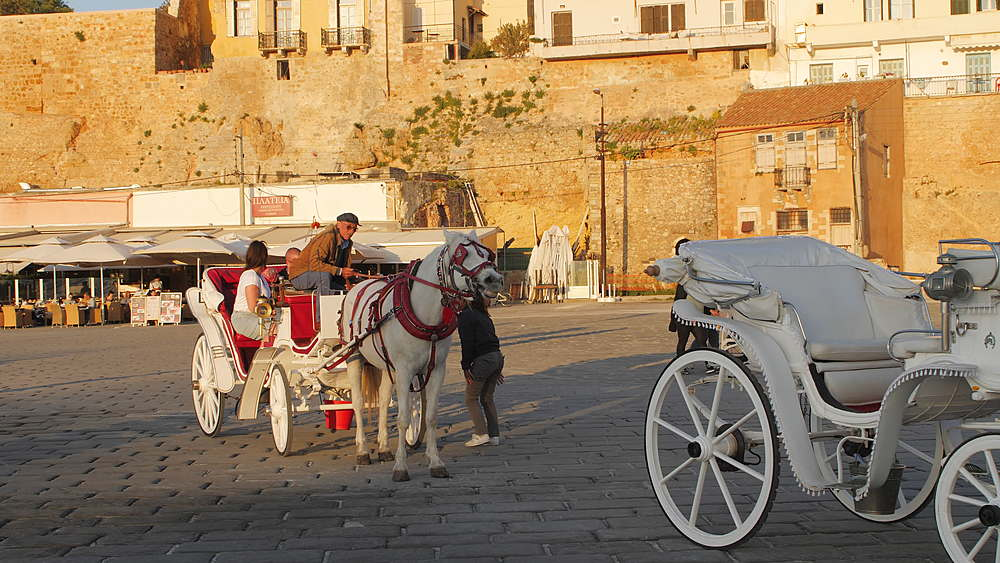 White Horse enjoys sun in Venetian Harbour, Chania, Crete, Greek Islands, Greece, Europe