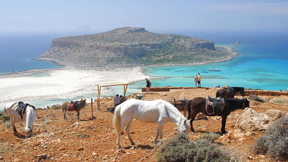 Donkey taxi near Balos Beach, Gramvoussa Peninsula, Balos Bay, Gramvousa Peninsula, Crete, Greek Islands, Greece, Europe