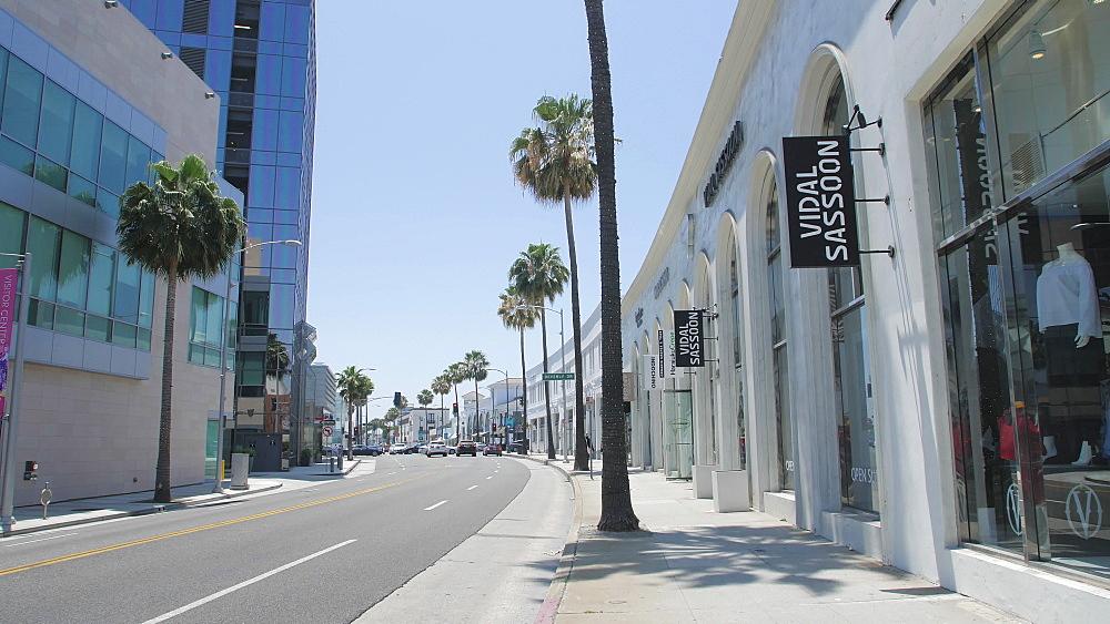View of palm trees lining Santa Monica Blvd, Beverly Hills, Los Angeles, LA, California, United States of America, North America - 1276-877