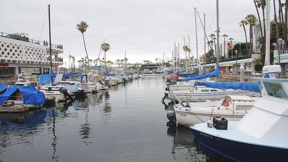View of King Harbor, Redondo Beach, Los Angeles, LA, California, United States of America, North America - 1276-891