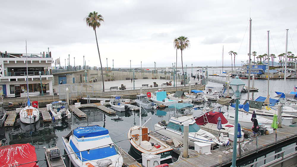 Crane shot of King Harbor, Redondo Beach, Los Angeles, LA, California, United States of America, North America - 1276-893