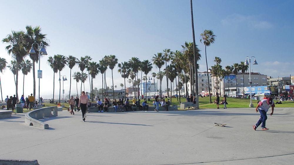 Skateboarders at Venice Beach, Sant Monica, Los Angeles, LA, California, USA, North America - 1276-949