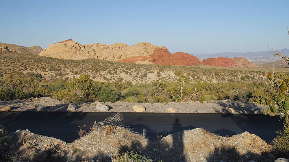 View of flora and mountains in Red Rock Canyon National Conservation Area, Nevada, USA, North America - 1276-971