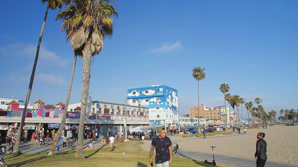 Venice Beach, Sant Monica, Los Angeles, LA, California, USA, North America - 1276-988