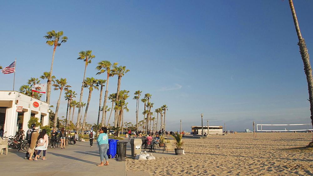 Venice Beach, Sant Monica, Los Angeles, LA, California, USA, North America - 1276-990