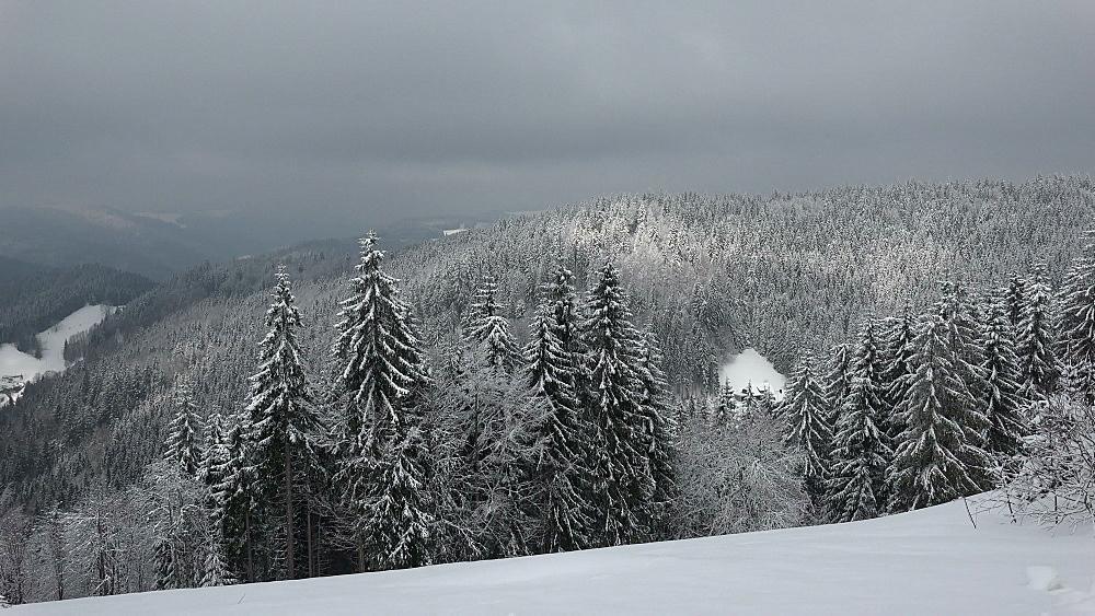 Winter landscape at Thurner, South Black Forest, Schwarzwald, Baden-Wurttemberg, Germany, Europe - 396-10179