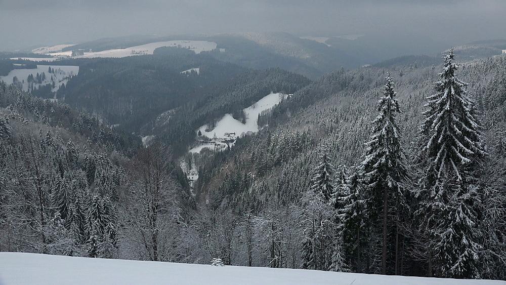 Winter landscape at Thurner, South Black Forest, Schwarzwald, Baden-Wurttemberg, Germany, Europe - 396-10180