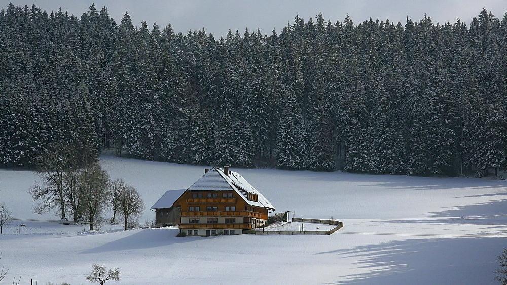 Farnhouse near Bretnau in winter, South Black Forest, Schwarzwald, Baden-Wurttemberg, Germany, Europe - 396-10181