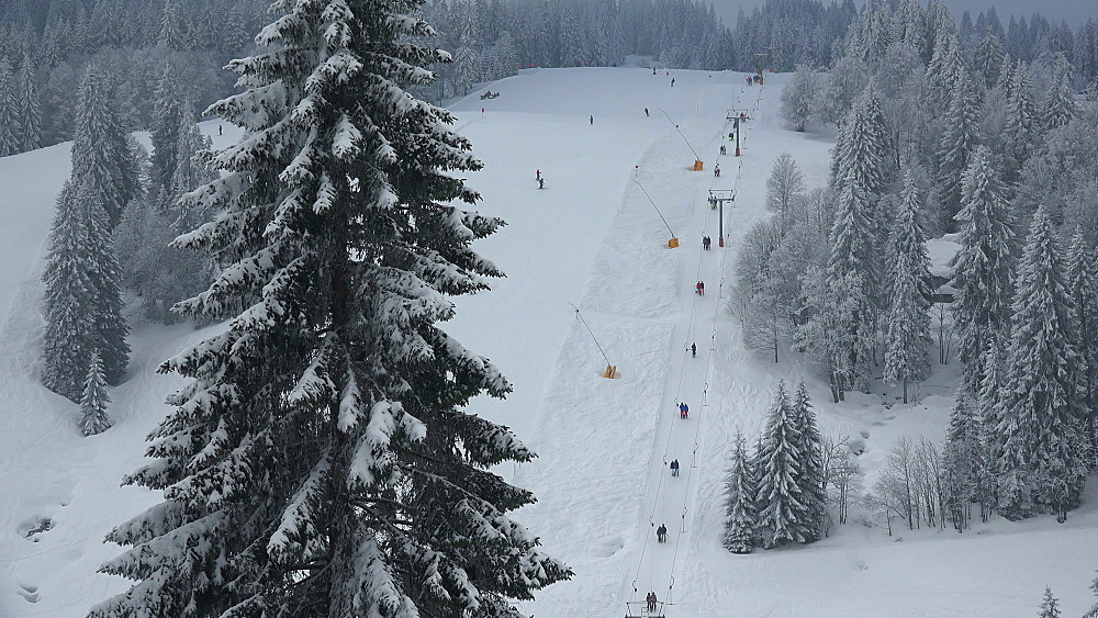 Skiing area at Feldberg Pass, South Black Forest, Schwarzwald, Baden-Wuerttemberg, Germany - 396-10184