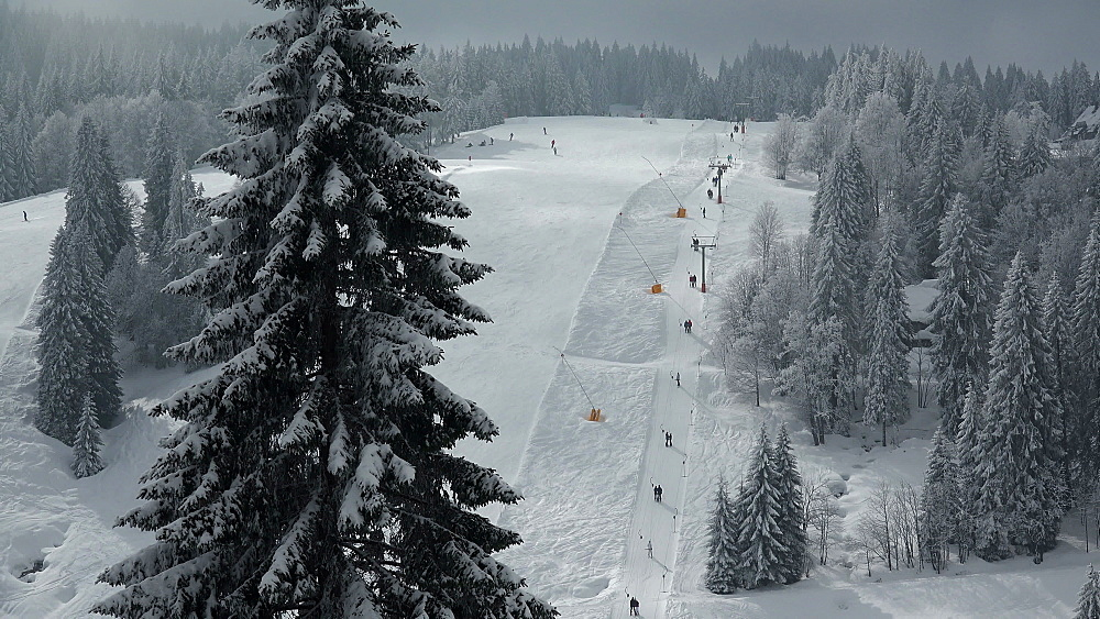 Skiing area at Feldberg Pass, South Black Forest, Schwarzwald, Baden-Wuerttemberg, Germany - 396-10185
