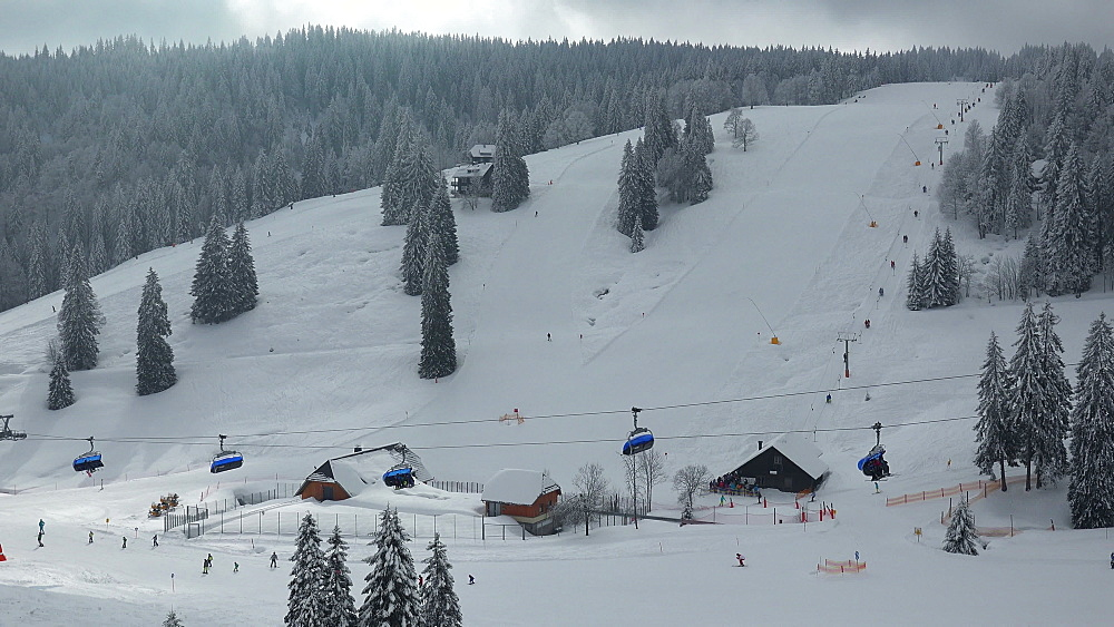 Skiing area at Feldberg Pass, South Black Forest, Schwarzwald, Baden-Wuerttemberg, Germany - 396-10186