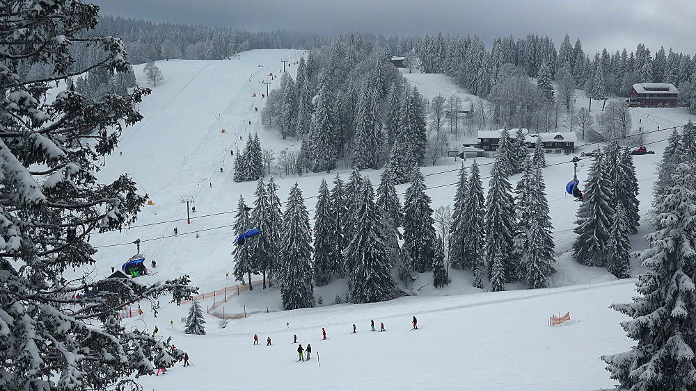 Skiing area at Feldberg Pass, South Black Forest, Schwarzwald, Baden-Wuerttemberg, Germany - 396-10188