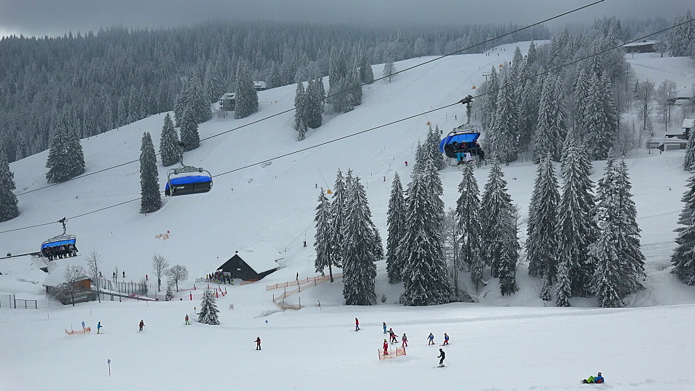 Skiing area at Feldberg Pass, South Black Forest, Schwarzwald, Baden-Wuerttemberg, Germany - 396-10189