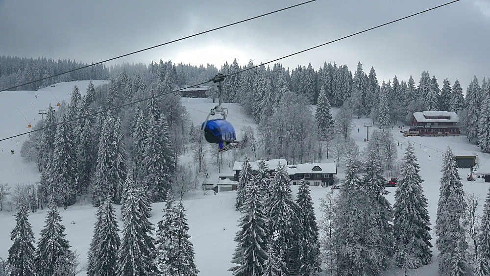 Skiing area at Feldberg Pass, South Black Forest, Schwarzwald, Baden-Wuerttemberg, Germany - 396-10190
