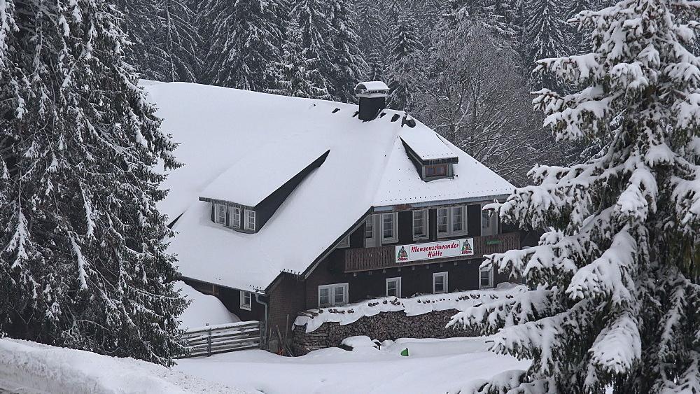 Menzenschwand Lodge in winter, Feldberg Pass, South Black Forest, Schwarzwald, Baden-Wurttemberg, Germany, Europe - 396-10195