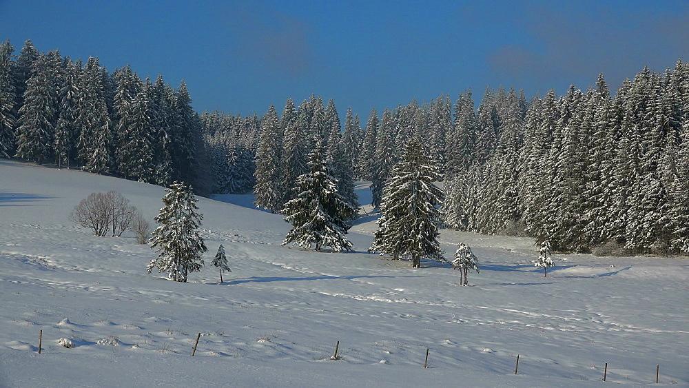 Winter landscape near Thurner, South Black Forest, Schwarzwald, Baden-Wurttemberg, Germany, Europe - 396-10200
