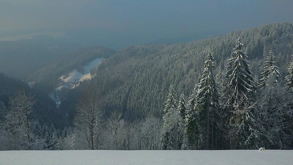 Winter landscape near Thurner, South Black Forest, Schwarzwald, Baden-Wurttemberg, Germany, Europe - 396-10203