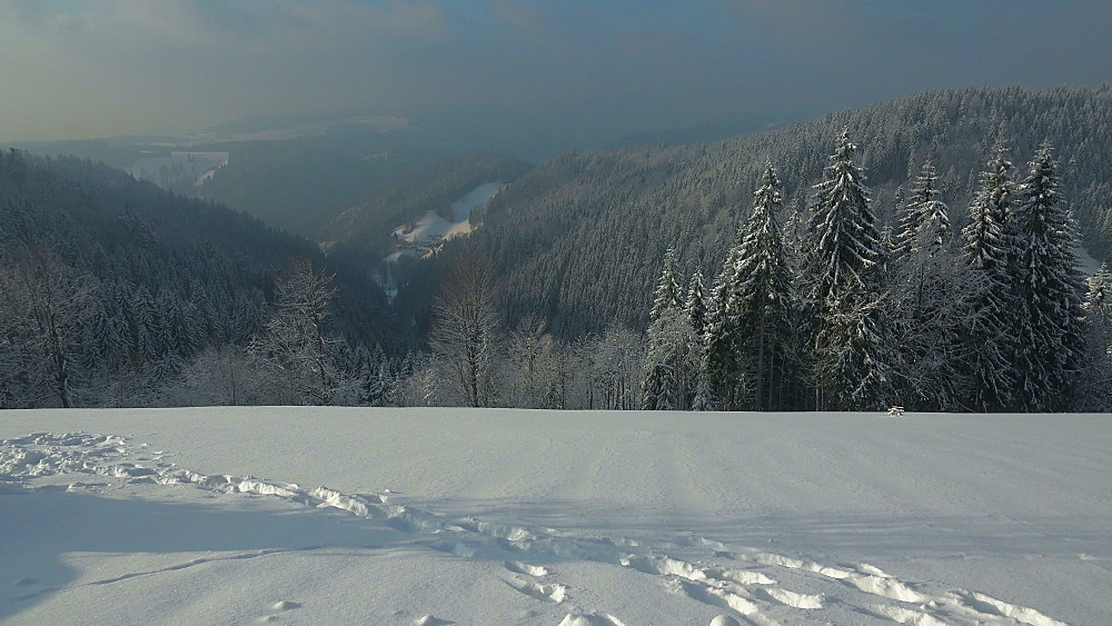 Winter landscape near Thurner, South Black Forest, Schwarzwald, Baden-Wurttemberg, Germany, Europe - 396-10204