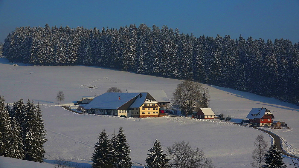 Farmhouse near Thurner in winter, South Black Forest, Schwarzwald, Baden-Wuerttemberg, Germany - 396-10206