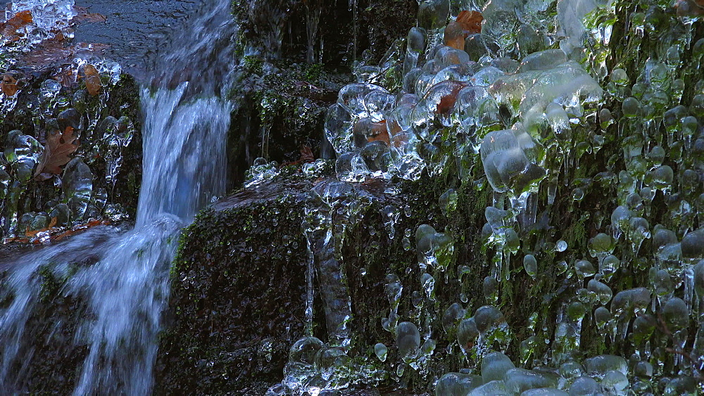 Icicles and ice sculptures at little forest brook, Taben Primeral Forest, Taben-Rodt, Saar Valley, Rhineland-Palatinate, Germany - 396-10232