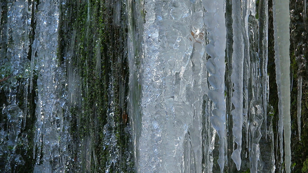 Icicles and ice sculptures at little forest brook, Taben Primeral Forest, Taben-Rodt, Saar Valley, Rhineland-Palatinate, Germany - 396-10234