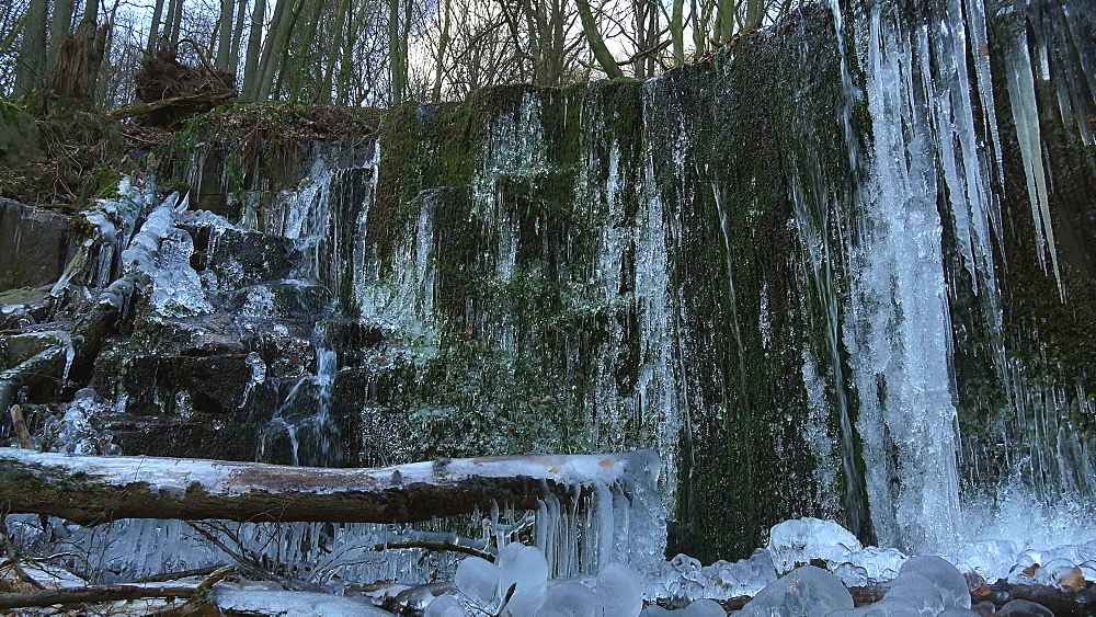 Icicles and ice sculptures at little forest brook, Taben Primeral Forest, Taben-Rodt, Saar Valley, Rhineland-Palatinate, Germany - 396-10238
