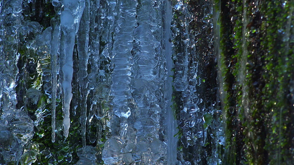 Icicles and ice sculptures at little forest brook, Taben Primeral Forest, Taben-Rodt, Saar Valley, Rhineland-Palatinate, Germany - 396-10240