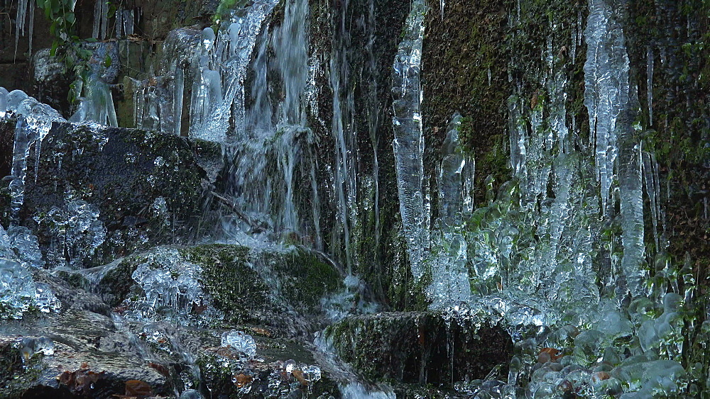 Icicles and ice sculptures at little forest brook, Taben Primeral Forest, Taben-Rodt, Saar Valley, Rhineland-Palatinate, Germany - 396-10241