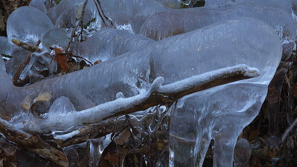 Icicles and ice sculptures at little forest brook, Taben Primeral Forest, Taben-Rodt, Saar Valley, Rhineland-Palatinate, Germany - 396-10242