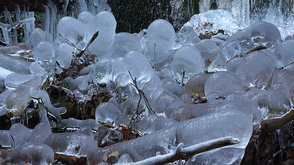 Icicles and ice sculptures at little forest brook, Taben Primeral Forest, Taben-Rodt, Saar Valley, Rhineland-Palatinate, Germany - 396-10243