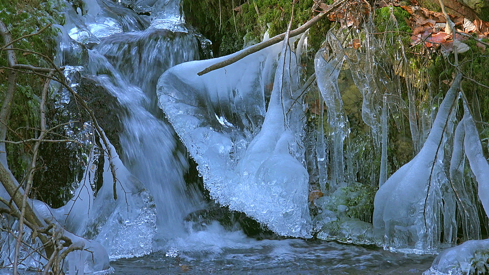 Ice sculptures at Wenichbach Brook in the natural forest Tabener Urwald (Taben Primeral Forest), Taben-Rodt, Rhineland-Palatinate, Germany - 396-10260