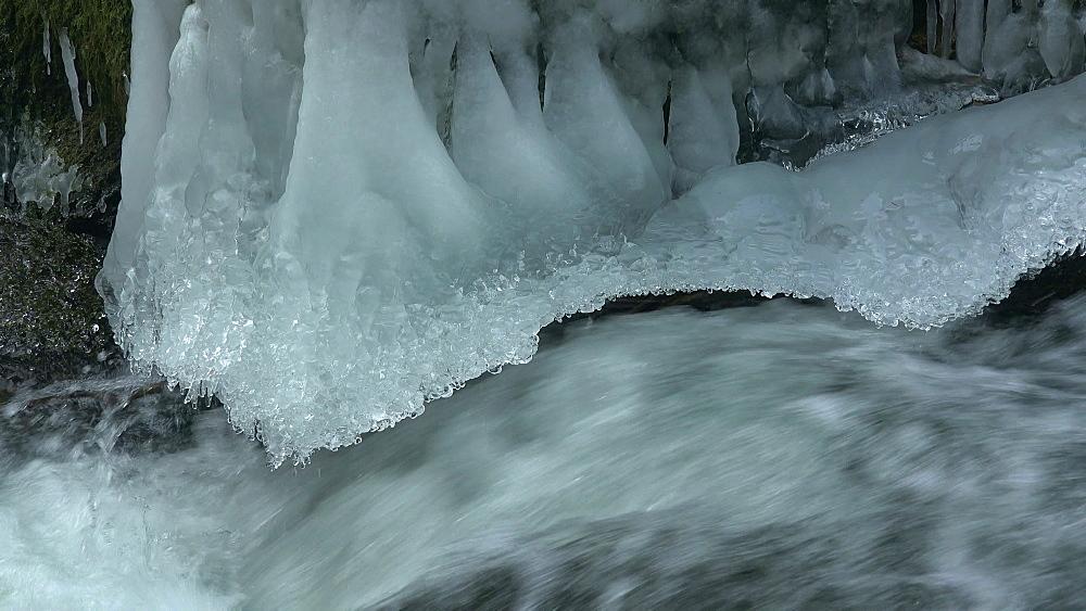 Ice sculptures of Pruem River at Irrel Waterfalls, South Eifel, Rhineland-Palatinate, Germany, Europe - 396-10267