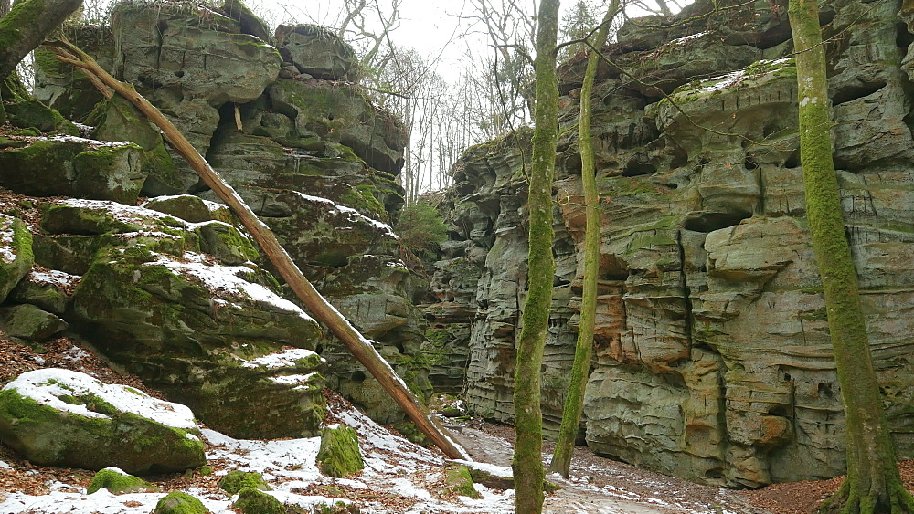 The Devil's Canyon at Ferschweiler Plateau near Ernzen, South-Eifel, Rhineland-Palatinate, Germany, Europe - 396-10282