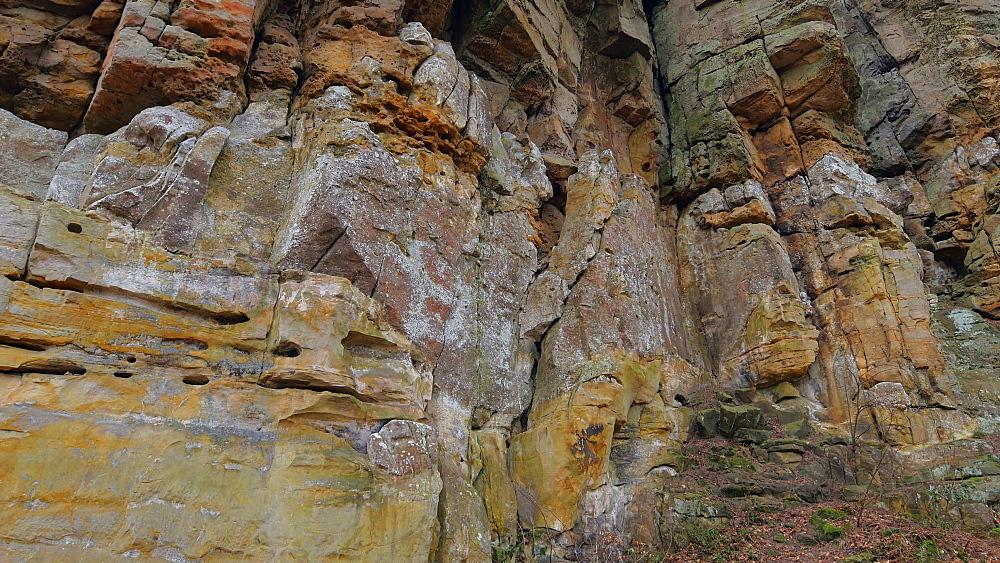 The Devil's Canyon at Ferschweiler Plateau near Ernzen, South-Eifel, Rhineland-Palatinate, Germany, Europe - 396-10285
