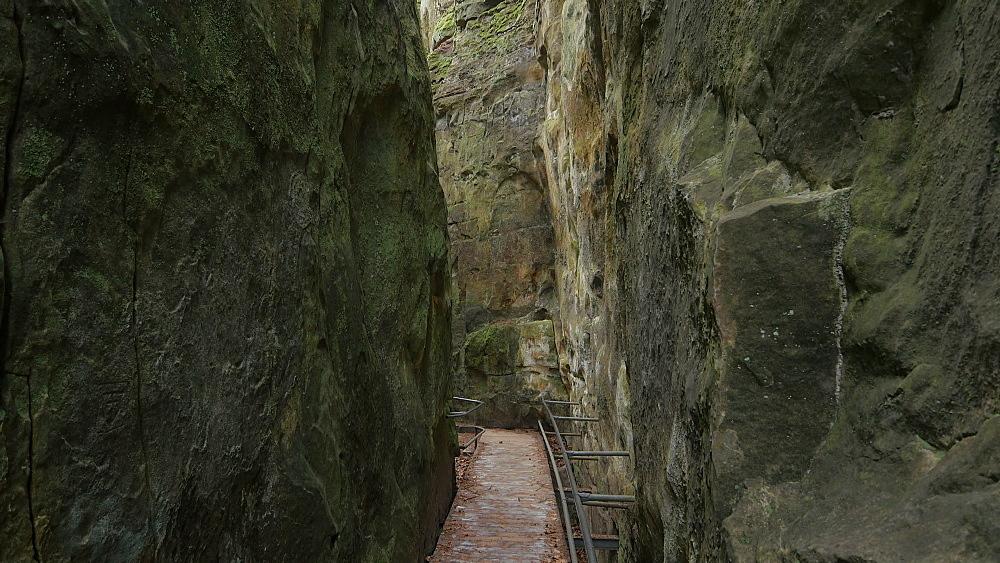 The Devil's Canyon at Ferschweiler Plateau near Ernzen, South-Eifel, Rhineland-Palatinate, Germany, Europe - 396-10286
