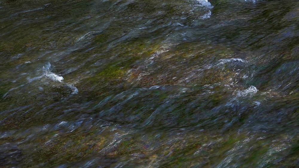 Little brook, Rhineland-Palatinate, Germany, Europe - 396-10293