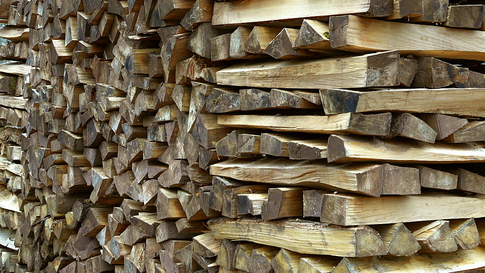 Stacked firewood in forest, Mettlach, Saarland, Germany, Europe