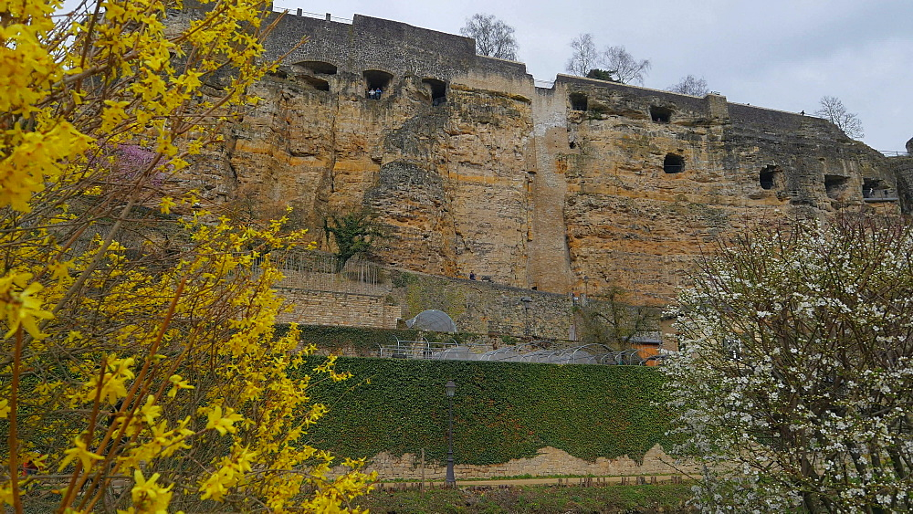 Bock Casemates, seen from Alzette Valley, Grund, Luxembourg City, Grand Duchy of Luxembourg, Europe - 396-10380