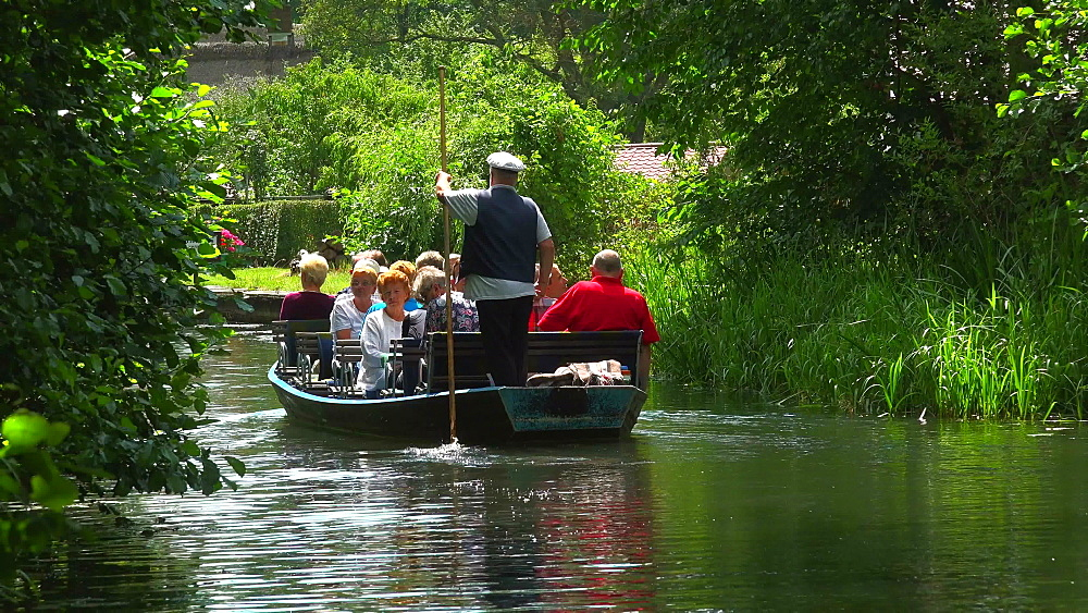 Boat tour on Spree River near Luebbenau, Spreewald, Brandenburg, Germany, Europe