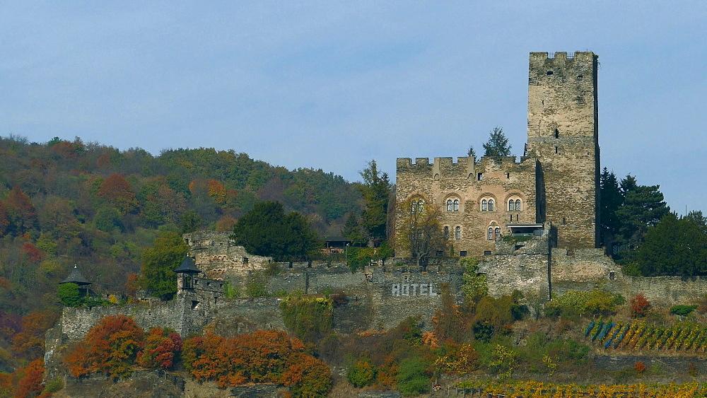 Rhine Valley, Gutenfels Castle in Kaub, Rhineland-Palatinate, Germany, Europe